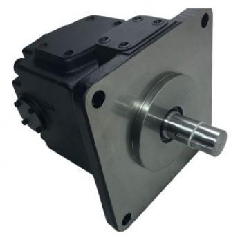 YUKEN PV2R14-14-136-F-RAAA-31 Double Vane Pump