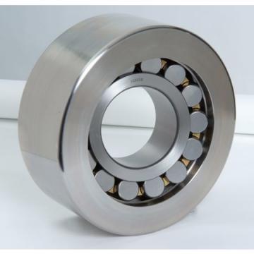 NSK TM204C3  Single Row Ball Bearings