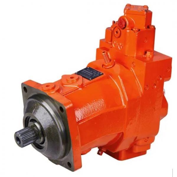 YUKEN PV2R23-41-76-F-RAAA-41 Double Vane Pump #3 image