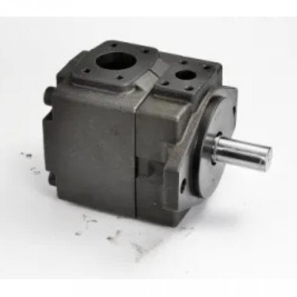 YUKEN  PV2R12-19-41-F-RAA-40 Double Vane Pump #2 image
